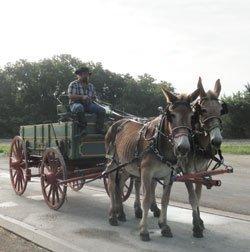 072113-wagon-farmer-bell-2