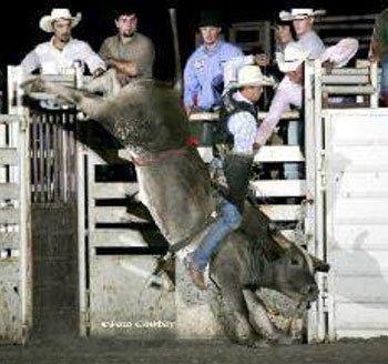 090513-lifetime-bull-rider