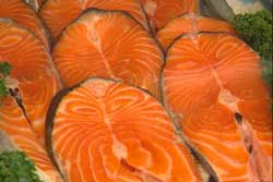 032314-Salmon