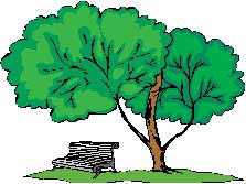 BENCH-UNDER-TREE-01