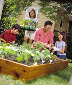 062814-eat-well-garden