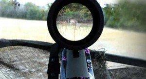 120314-deer-season