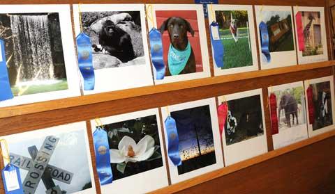 070215-os-co-fair-photos