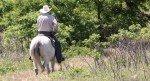 092415-kdwpt-horse-trail2