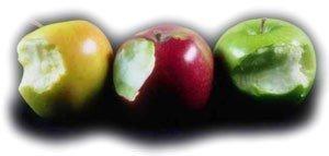110415-apple-fles2