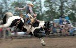 051616-burlingame-rodeo-bro
