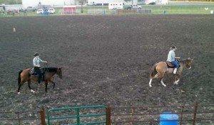 082316-horse-fun-show