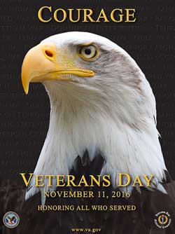 102916-veterans-day-graphic